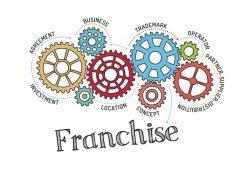 Franchise Model Gears